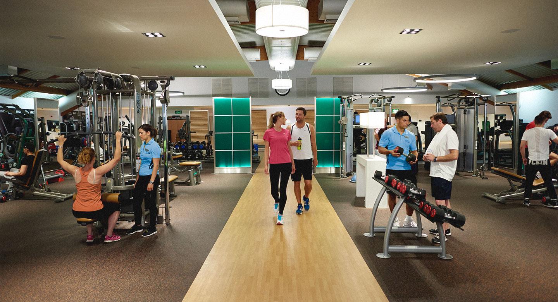 the gym as a social scene essay